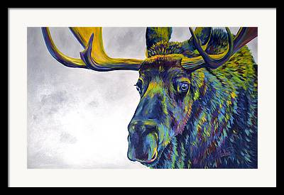 Abstracted Wildlife Art Framed Prints