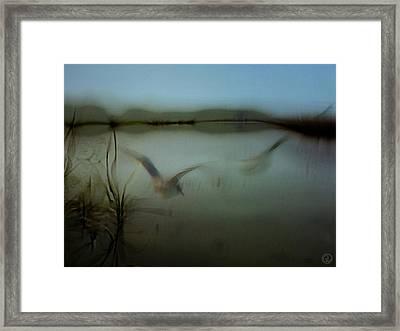 Moody Morning Framed Print by Gun Legler