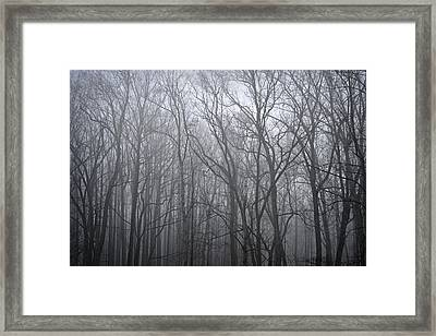 Moody Outlook Framed Print by Mary Zeman