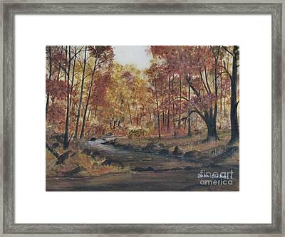 Moody Woods In Fall Framed Print by Dana Carroll