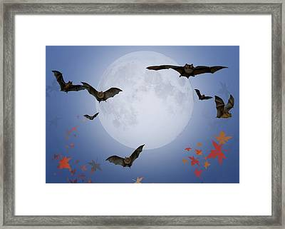 Moon And Bats Framed Print by Melissa A Benson