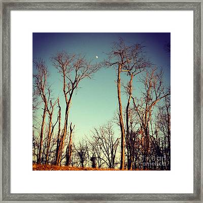 Framed Print featuring the photograph Moon Between The Trees by Kerri Farley