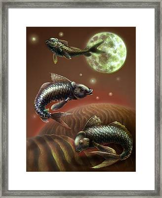 Moon Fish Framed Print