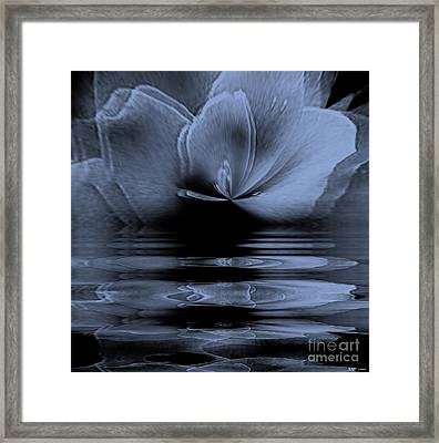 Moon Glow Double Vision Framed Print by Elizabeth McTaggart