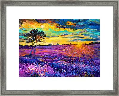 Lavender Field Framed Print by Ivailo Nikolov