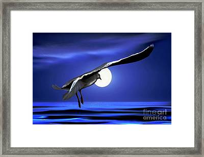 Moon Launch Framed Print by Dale   Ford