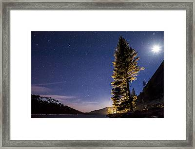 Moon Light Over Tenaya Lake Framed Print by Cat Connor