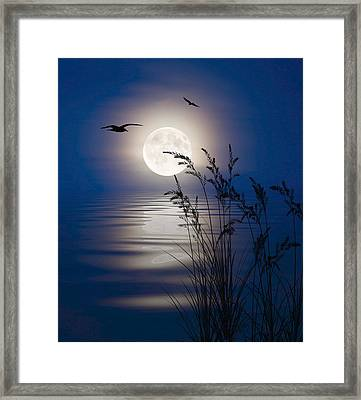 Framed Print featuring the digital art Moon Light Silhouettes by Nina Bradica