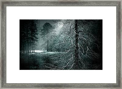 Moon Misty Lake  Framed Print by Dorothy Walker