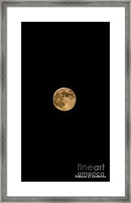 Moon Nights Framed Print by Rebecca Christine Cardenas