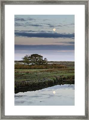 Moon Over Marsh Framed Print