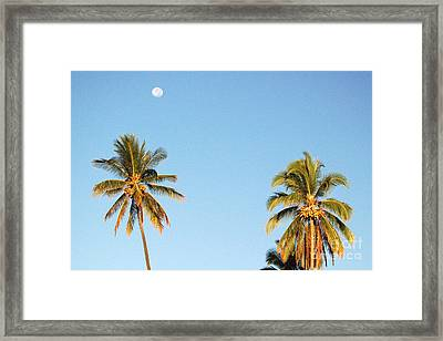 Moon Over Molokai Framed Print