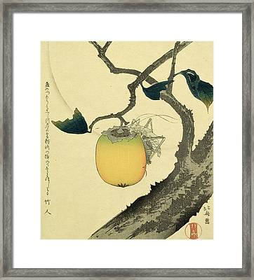 Moon Persimmon And Grasshopper Framed Print