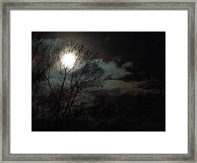 Moon Rise Framed Print by Pete Trenholm