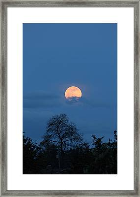 Moon Rising Framed Print