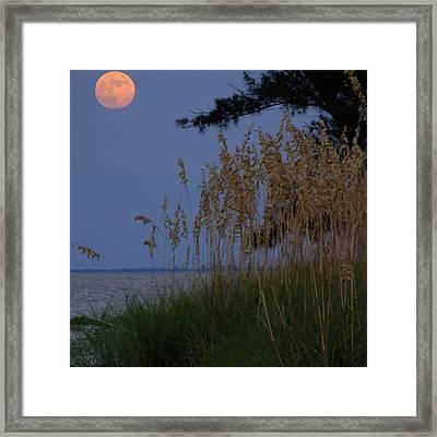 Moon Rising Over Anna Maria Island Framed Print