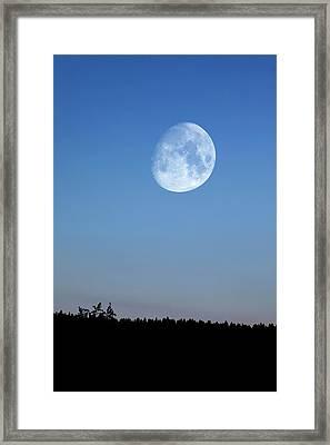 Moon Rising Over Trees Framed Print