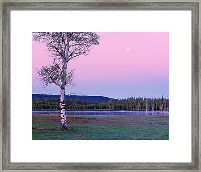 Moon Set Framed Print by Leland D Howard
