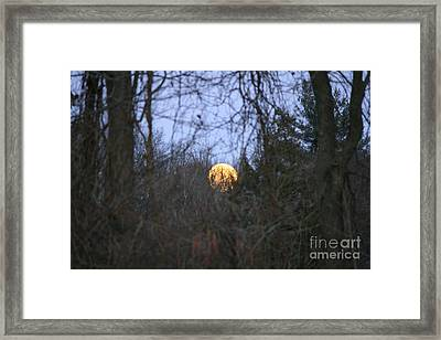 Moon Shadow Framed Print by Neal Eslinger