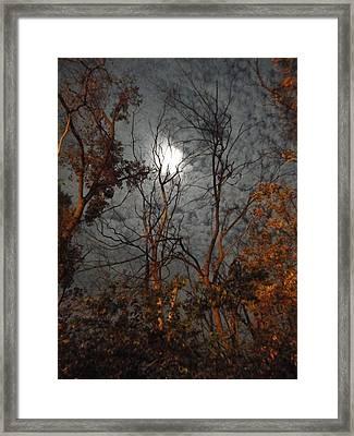 Moon Shiner Framed Print by Guy Ricketts