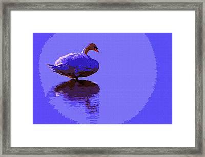 Swan Moon 2 Framed Print