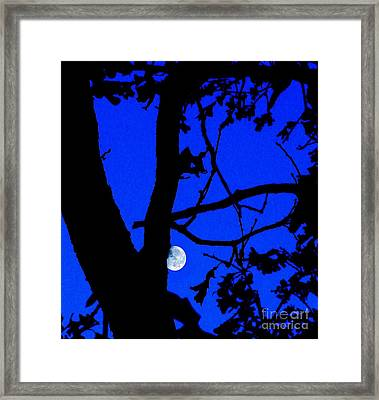 Framed Print featuring the photograph Moon Through Trees 2 by Janette Boyd