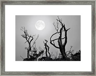 Moon Whisperer Framed Print by Edwin Verin
