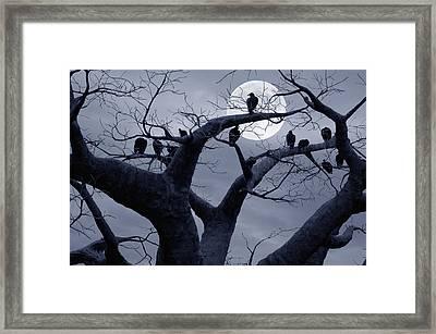 Moon Whisperer II Framed Print by Edwin Verin