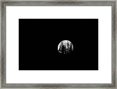Moonlight Framed Print by Donna Kennedy