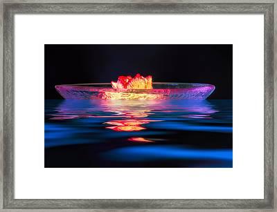 Moonlight Drift Framed Print by Joan Herwig