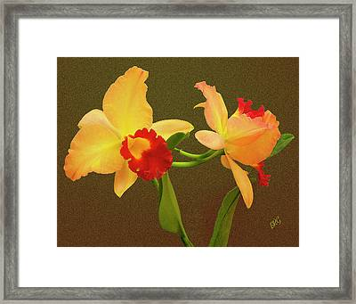 Moonlight Lady Orchid Framed Print