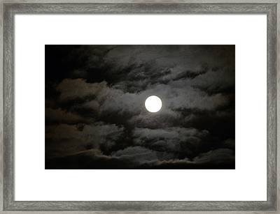 Moonlight Magic Framed Print