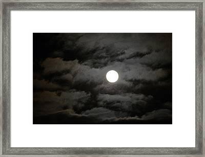 Moonlight Magic Framed Print by Cathy Shiflett
