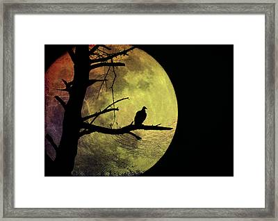 Moonlight Mile Framed Print by Bill Cannon