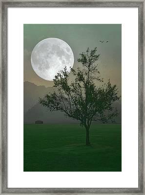 Moonlight On The Plains Framed Print by Tom York Images