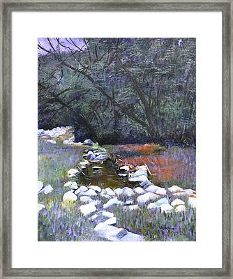 Moonlight Over Kruger Park Framed Print