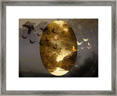 Moonlight Road Framed Print by Andre Pillay