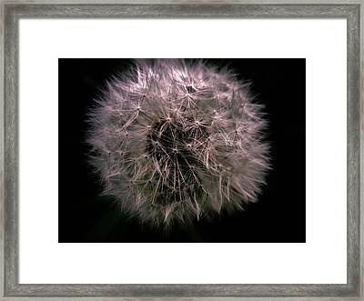 Moonlight Framed Print by Sherman Perry