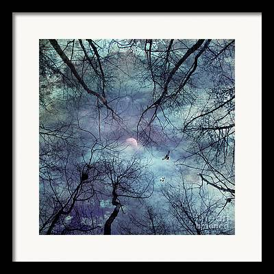 Forest Digital Art Framed Prints
