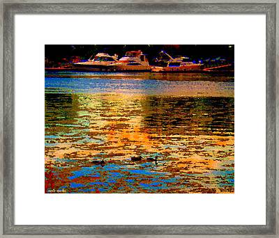Moonlight Swim Boats And Ducks Navigate North Shore St Lawrence Lachine Canal Quebec Carole Spandau Framed Print by Carole Spandau