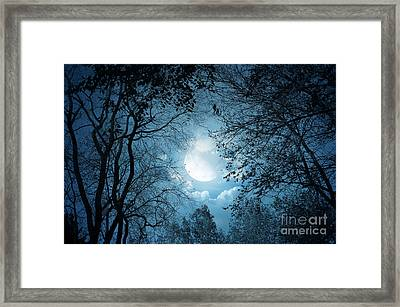 Moonlight With Forest Framed Print by Boon Mee