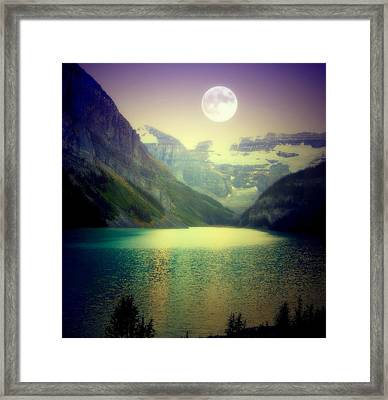 Moonlit Encounter Framed Print by Karen Wiles