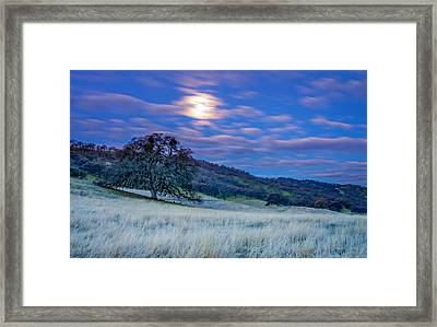 Moonlit Frost Framed Print by Marc Crumpler