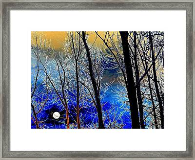 Moonlit Frosty Limbs Framed Print