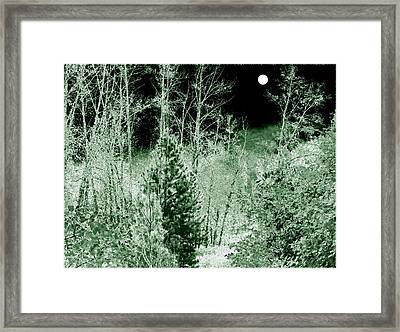 Moonlit Frosty Night Framed Print by Will Borden