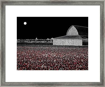 Moonlit Tulips Framed Print