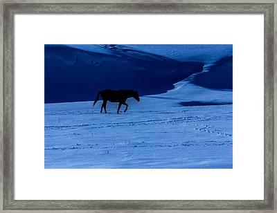 Moonlit Winter Saunter  Framed Print