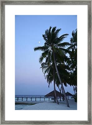 Moonrise In Maldives Framed Print by Corinne Rhode