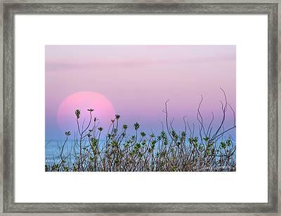 Moonrise Over Dunes Framed Print