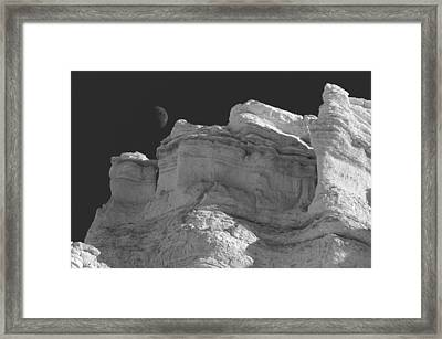 Moonshadow Framed Print by Carolyn Dalessandro